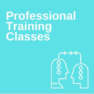 Professional Training Classes